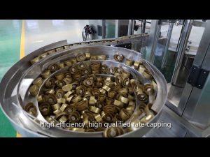automatische Servokolbensauce, Honig, Marmelade, hochviskose Flüssigkeitsfüllleitung
