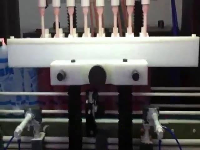 Korrosionsschutz-Plastikflasche Toilettenreiniger Bleichsäure-Füllmaschine